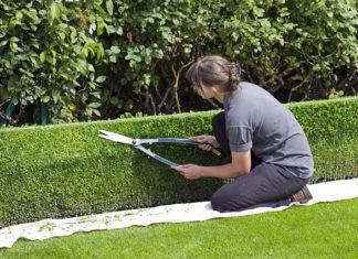 W jakie narzędzia należy się zaopatrzyć do pracy w ogrodzie?