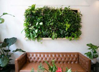 Jak założyć ogród wertykalny we wnętrzu?