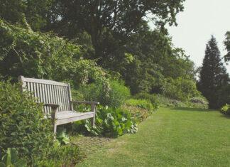 Aranżacja przydomowego ogrodu